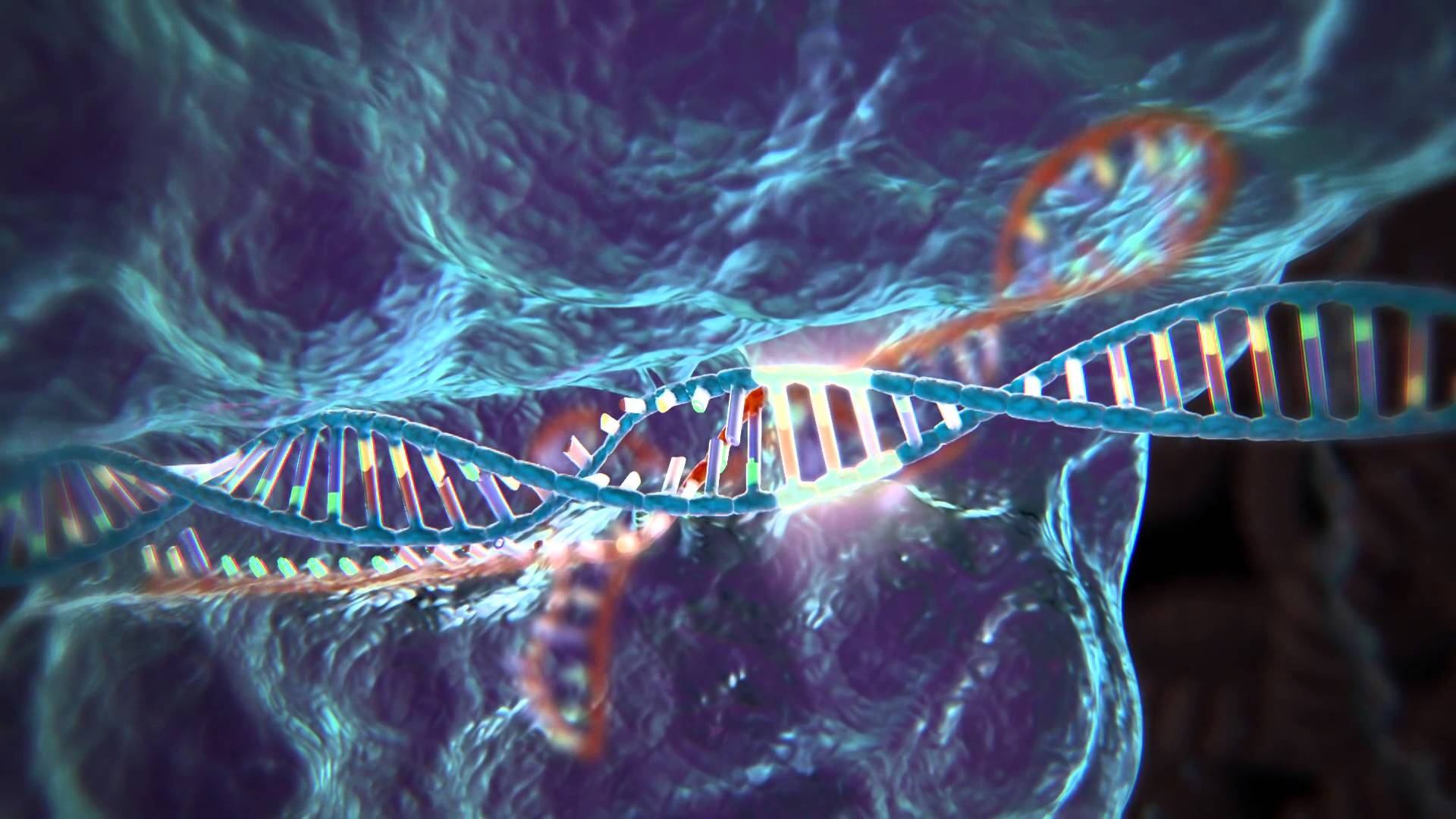 CRISPR – Cutting Edgenetics